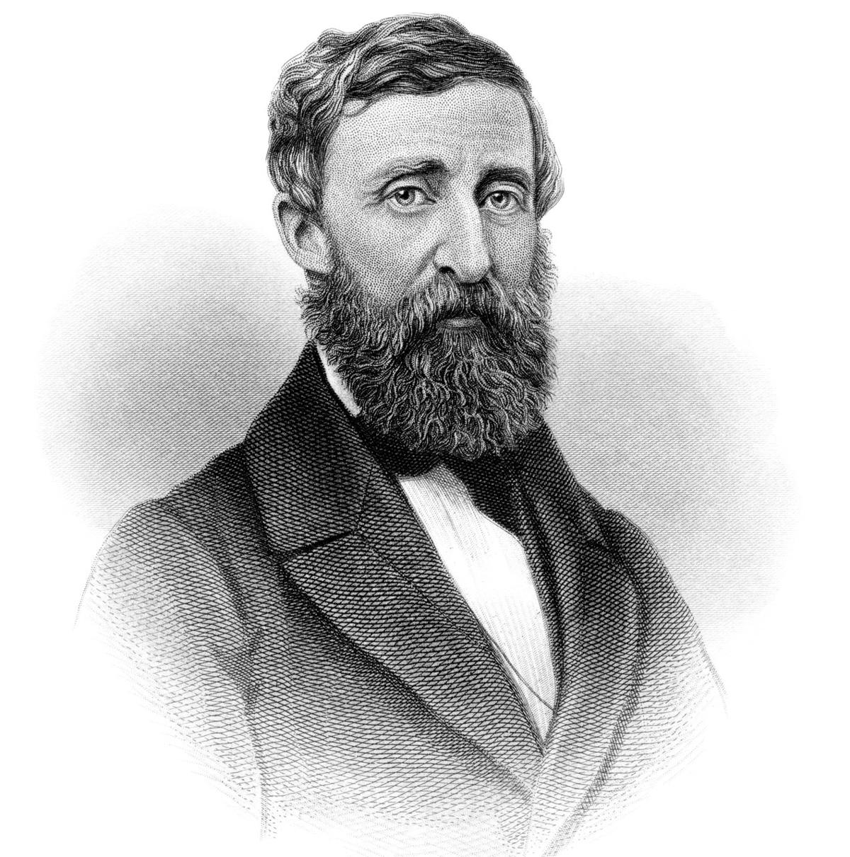 henry david thoreau image
